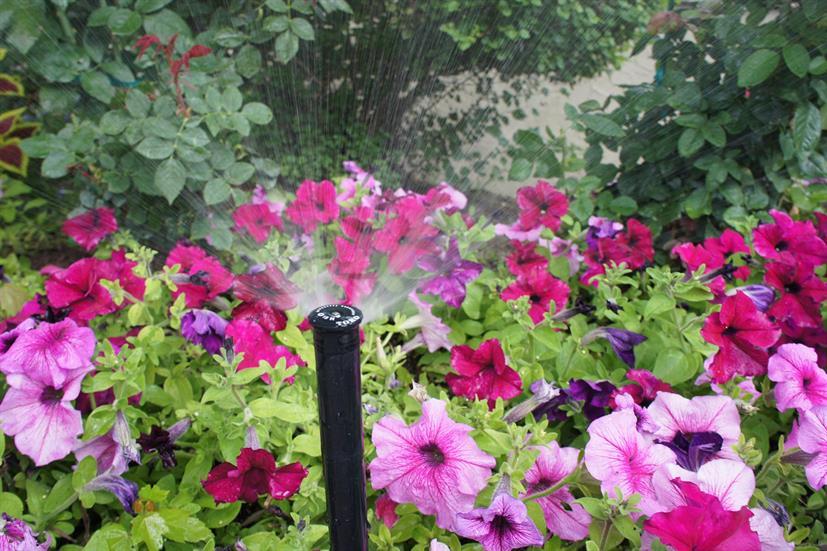 professional sprinkler system repairs Birmingham