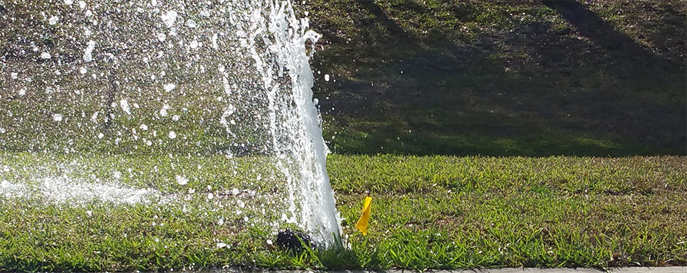 broken sprinkler head repair Hampton Roads Virginia
