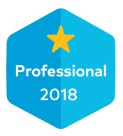 Professional 2018