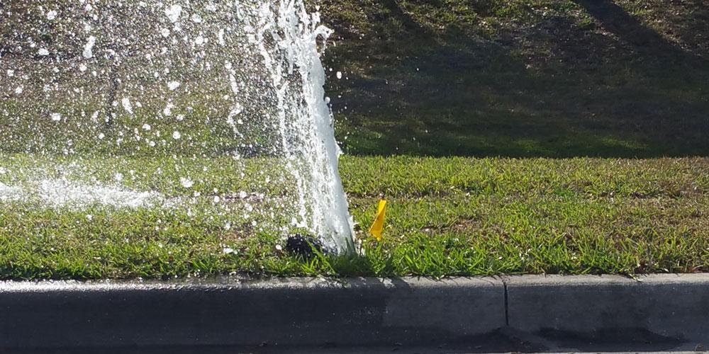 broken sprinkler head Hampton VA