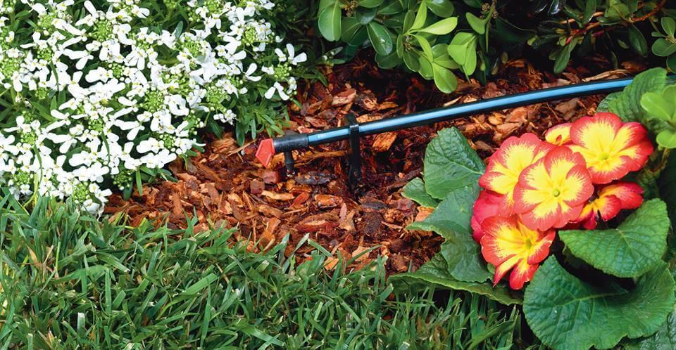 Drip Irrigation System Lexington Ky