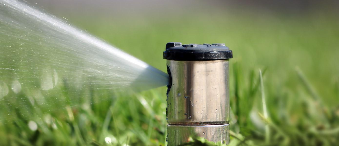 residential grass with sprinkler system