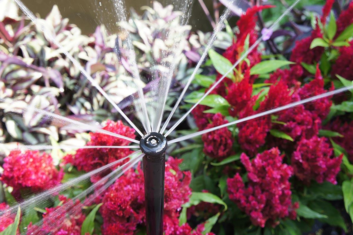 Aledo Sprinkler Repair