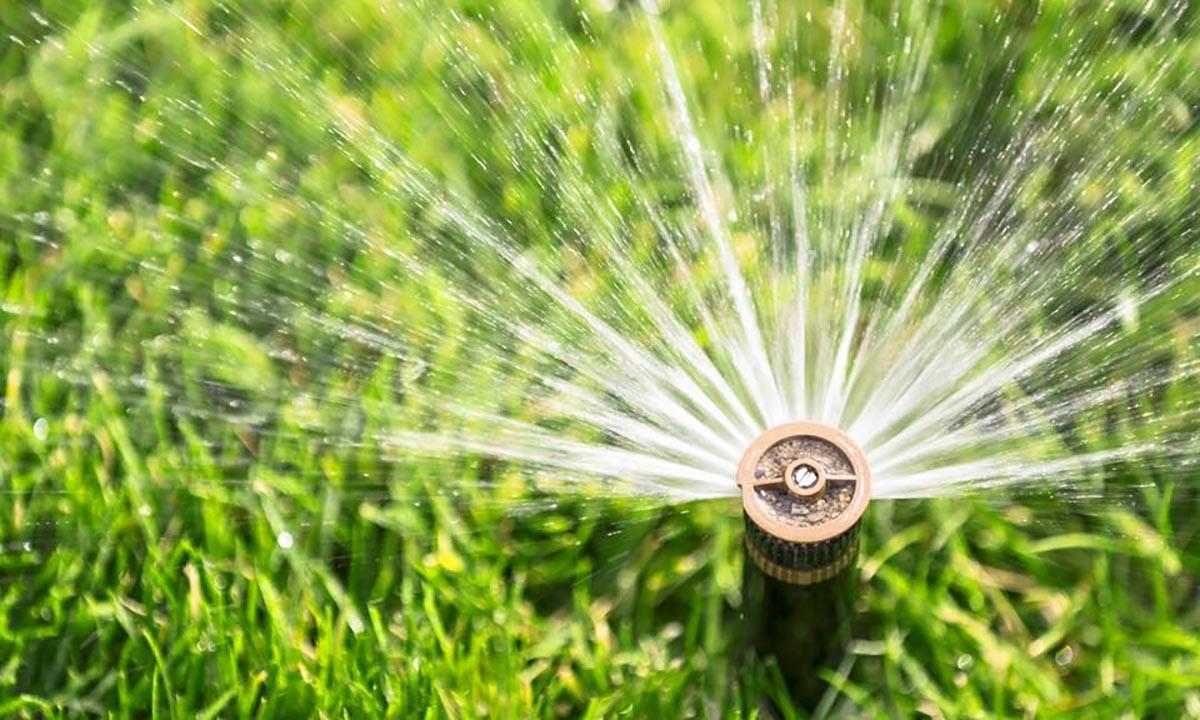 sprinkler head watering green grass