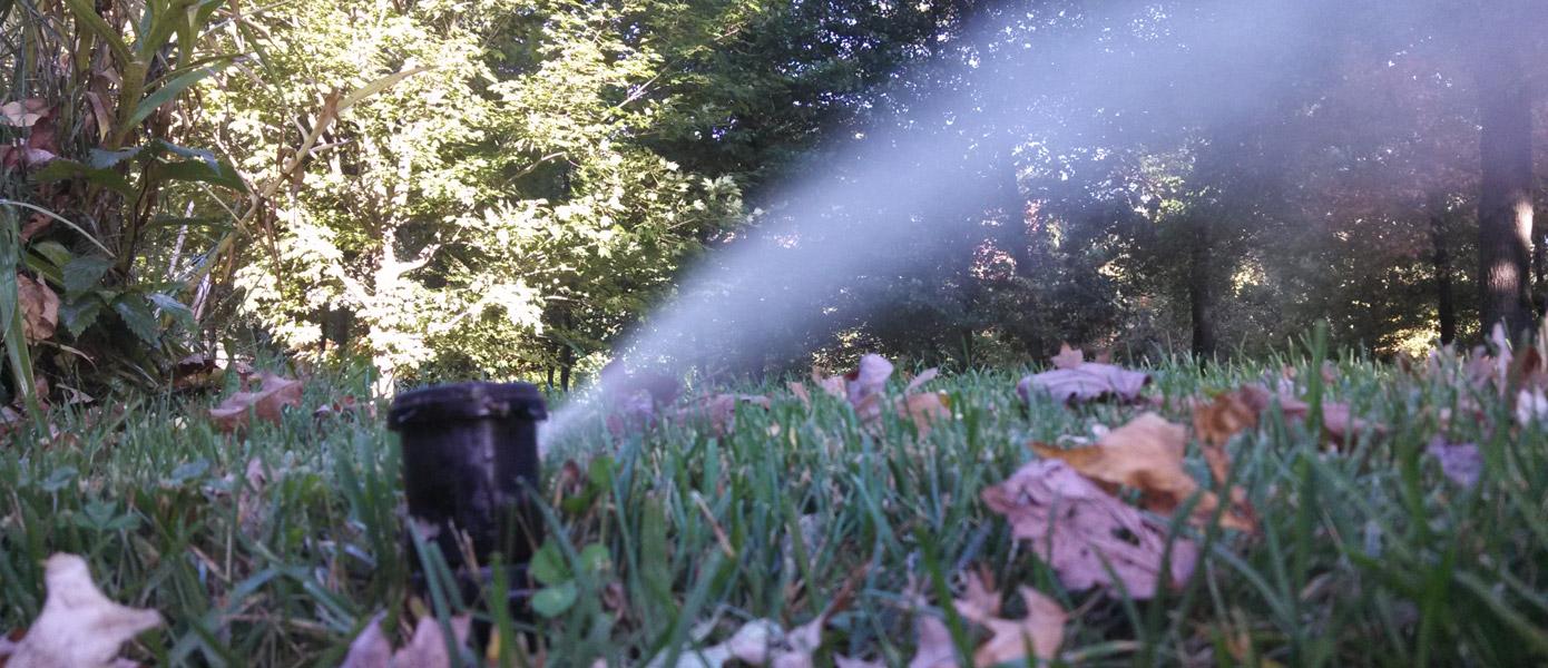 sprinkler in yard